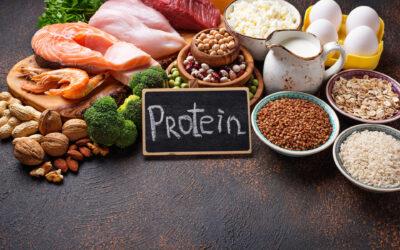 Proteine und Ostereier
